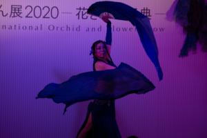 荒川区で受けられるベリーダンス